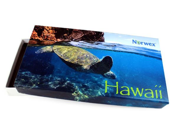 Hawaii Eco Box